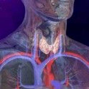 Туберкульоз органів ендокринної системи